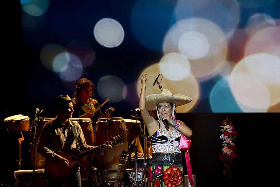 liladowns2