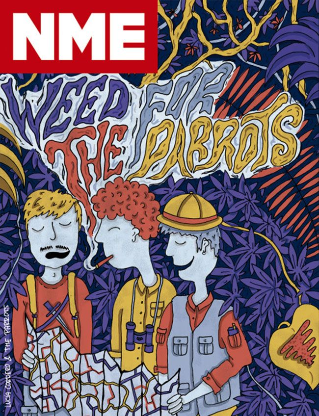 NME-cover-the-parrots