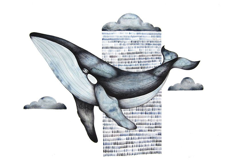 flying_whale_low