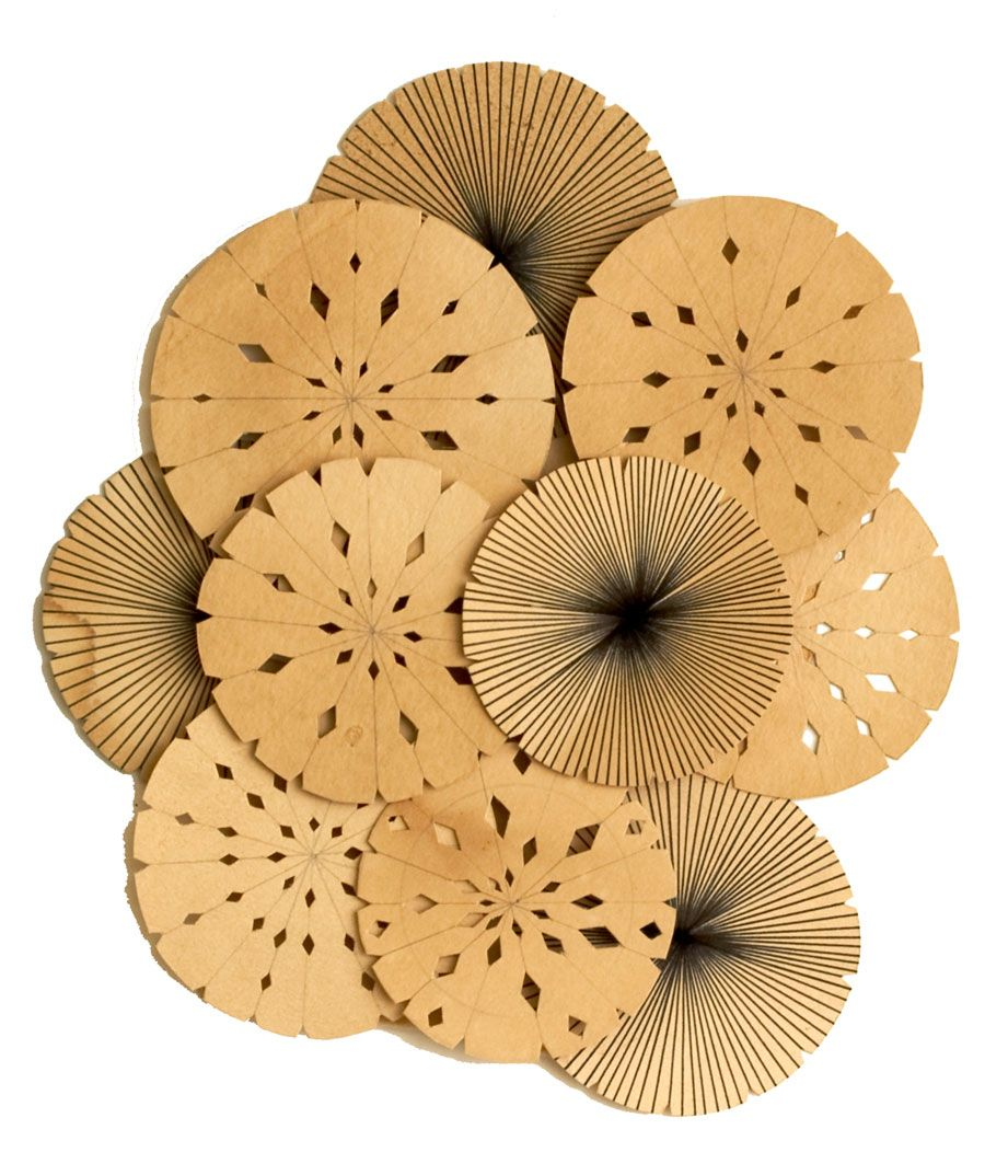 kelly-ording7