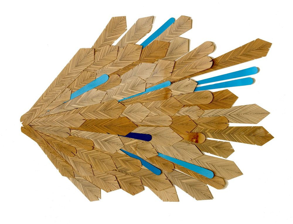 kelly-ording8